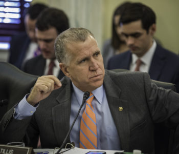 Senator Tom Tillis